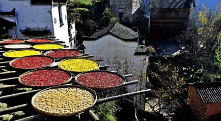 Sắc thu ở làng cổ Hoàng Lãnh Giang Tây