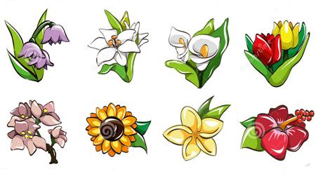 Tên gọi các loại hoa và cây cảnh trong tiếng Trung
